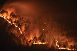 Cal Wildfire Smoke Safety and Emergency Regulation for All Industries