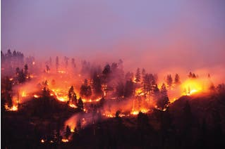 Wildfire Smoke Safety Awareness for All Industries