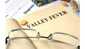 Valley Fever Awareness for All Industries