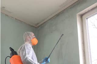 Mold Remediation & Restoration for Supervisors and Managers for Construction